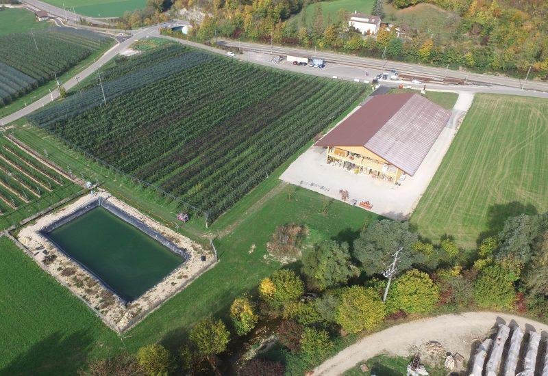 Öpfelhüsli, Apfelanlage und Bewässerungsteich