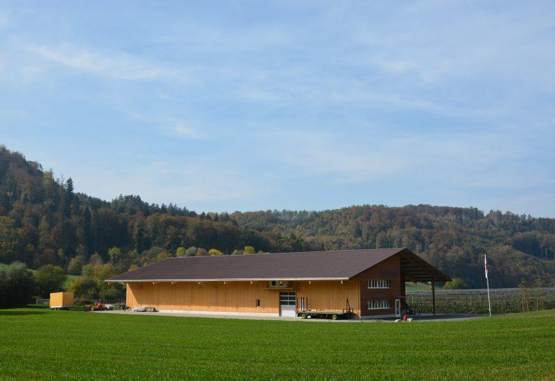 Neubau Öpfelhüsli von Links